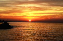 выходит заход солнца моря ладони Стоковые Изображения RF