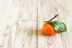 выходит tangerine Стоковые Изображения