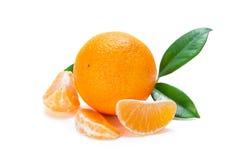 выходит tangerine Стоковое Изображение
