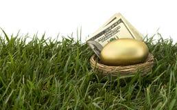 Выход на пенсию яйц из гнезда стоковые фото