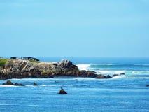 Выход пластов утеса на Тихом океане Стоковые Фото
