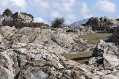 Выходы на поверхность гранита Стоковая Фотография