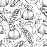 вычерченная картина руки безшовная Corns сбора осени, яблоки, насос Стоковые Изображения RF