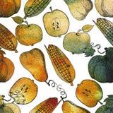 вычерченная картина руки безшовная Corns сбора осени, яблоки, насос Стоковая Фотография