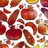вычерченная картина руки безшовная Corns сбора осени, яблоки, насос Стоковое фото RF