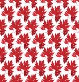 Вычерченная предпосылка осени с красивыми листьями картина безшовная Красные изолированные кленовые листы, вектор или белая предп бесплатная иллюстрация