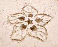 вычерченная рука цветка Стоковые Фото