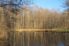 вычерченные древесины белизны вектора озера иллюстрации руки Стоковое Изображение
