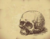 вычерченный череп руки Стоковые Фото