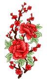 Вышивка Вышитые элементы дизайна при изолированные цветки и листья Сакуры цветет красный цвет Стоковое фото RF