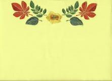 вышивка флористическая Стоковые Фотографии RF