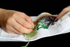 вышивка Стоковые Фотографии RF