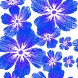 Вышитые голубые цветки на картине белой предпосылки безшовной Стоковые Фотографии RF