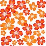 Вышитые красные оранжевые цветки на Пэт белой предпосылки безшовном Стоковая Фотография RF