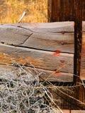 Выдержанная загородка доски Стоковое Изображение