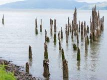 Выдержанные деревянные планки 2 дока Стоковые Изображения