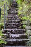 Выдержанные каменные шаги Стоковое фото RF