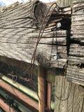 Выдержанный строб на выгоне Стоковая Фотография