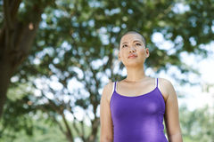 Выдерживая рак молочной железы Стоковое Изображение RF