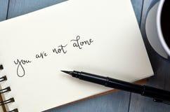 ВЫ ОДНИ рук-lettered в блокноте с ручкой щетки стоковое изображение