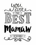 Вы самое лучшее Mamaw в мире иллюстрация штока