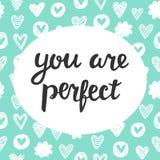 Вы совершенны Стоковая Фотография