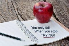 Вы только терпите неудачу когда вы останавливаете попробовать Вдохновляющая цитата стоковые фото