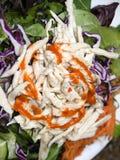вьетнамец салата еды цыпленка Стоковая Фотография RF