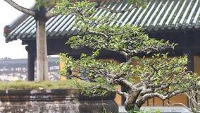 Вьетнам Имперский королевский дворец в оттенке Запретный город императоров акции видеоматериалы