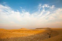Вьетнам и пустыня белизны Соединенных Штатов Ченнаи Стоковое Изображение RF