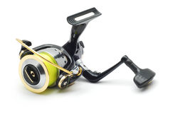 Вьюрок рыбной ловли Стоковое Изображение RF