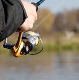 вьюрок рыболовства Стоковые Изображения