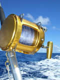 вьюрок рыболовства Стоковая Фотография RF