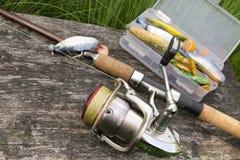 вьюрок рыболовства Стоковое Изображение RF