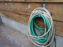 Вьюрок шланга против siding кедра стоковое изображение rf