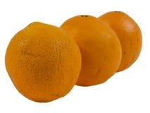 Вянуть апельсины на белой предпосылке Стоковая Фотография