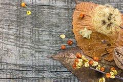 Вянуть листья осени и высушенные заводы на деревенском деревянном backgro Стоковое фото RF