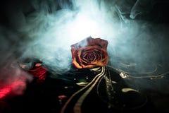 Вянуть роза знаменует потерянную влюбленность, развод, или плохое отношение, умершие подняло на темную предпосылку с дымом стоковые фото