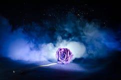 Вянуть роза знаменует потерянную влюбленность, развод, или плохое отношение, умершие подняло на темную предпосылку Стоковые Изображения RF