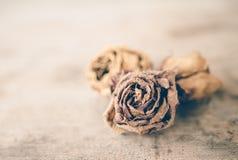 Вянуть розы на деревянном столе Стоковые Фото