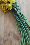 Вянуть daffodils отрезка Стоковая Фотография RF