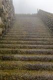 Влажная лестница в тумане на острове Мадейры Стоковое Изображение RF