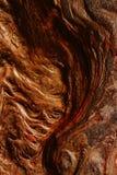 Влажная каменная поверхностная текстура Стоковые Фото