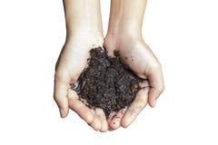 Влажная почва в руке Стоковые Изображения RF
