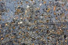 Влажная предпосылка текстуры камешков стоковые изображения rf