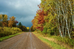 Влажная проселочная дорога, осень стоковое фото rf