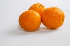 Влажные апельсины на белой предпосылке Стоковое Изображение RF
