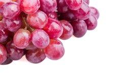 Влажные виноградины Стоковые Фотографии RF