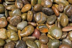 Влажные камни для предпосылки Стоковая Фотография