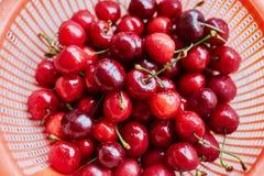 Влажные свежие сладостные вишни в стрейнере Стоковое Изображение